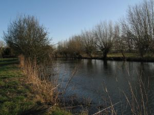 Upper Thames
