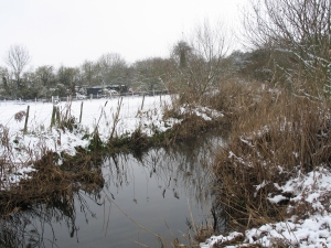 The Upper Lea in it's winter cloak