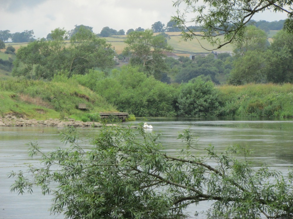 The Wonders of the Wye (4/6)