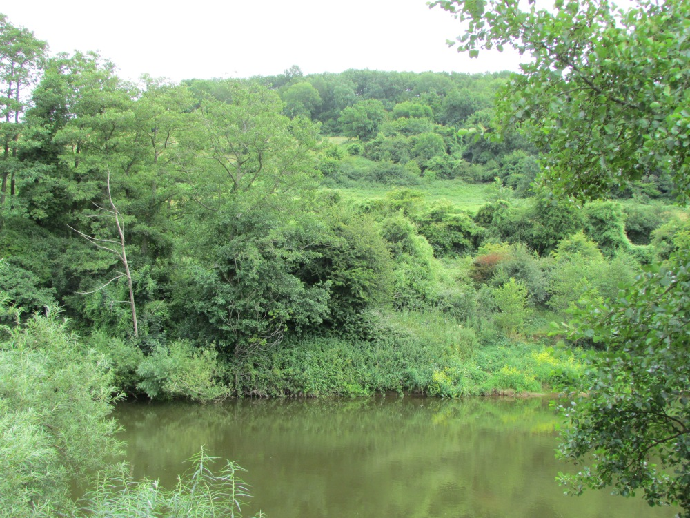 The Wonders of the Wye (5/6)
