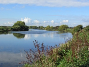 A Worksop stretch of the Trent