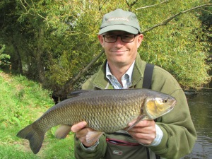 A beautiful Wye chub