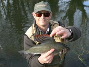 1lb 12oz Itchen Grayling